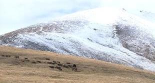 MONGOLIA - MOUNT KHUITEN
