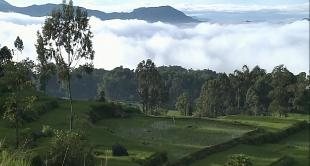 SULAWES IN INDONESIA - MOUNT RANTEMARIO