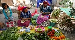 21 - MEXICO: PILAR CABRERA - OAXACA