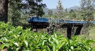 280 - SRI LANKA: WITH RODRIGO RIDING THE BLUE TRAIN