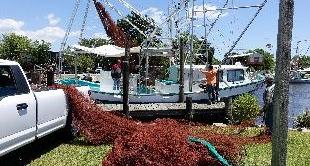281 - THE LAST SHRIMP FISHERMEN OF LOUISIANA