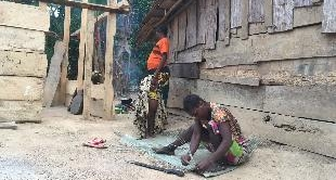 CAMEROON: THE GREEN TERROR 24-03-18