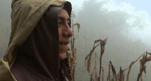 20 - WHISTLES IN THE MIST: WHISTLED SPEECH IN OAXACA