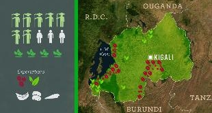 MAPPING THE WORLD - RWANDA, A MIRACLE AFTER THE GENOCIDE