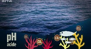 MAPPING THE WOLRD - SAVE THE OCEANS