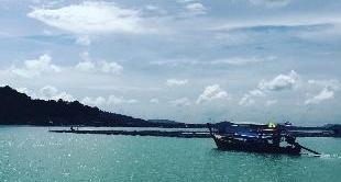 14 - INNOVATION ON BOARD - MUSHROOMS (THAILANDE)