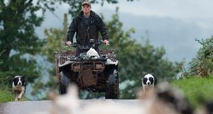 18 - WALES : THE WORLD CHAMPIONSHIP OF SHEEPDOGS