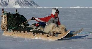 24 - THE LITTLE HUNTSMAN OF THE ARCTIC